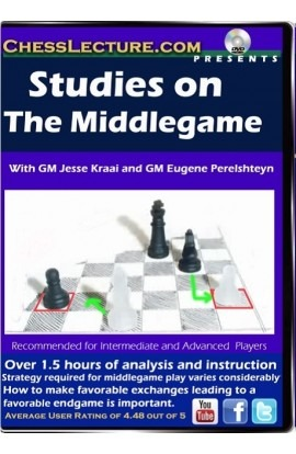 Studies on The Middlegame Front