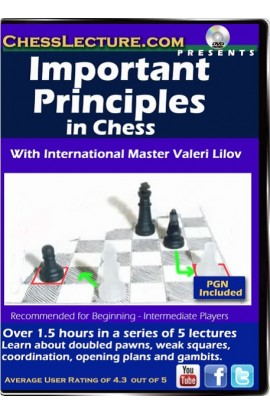 Important Principles in Chess - Chess Lecture - Volume 156