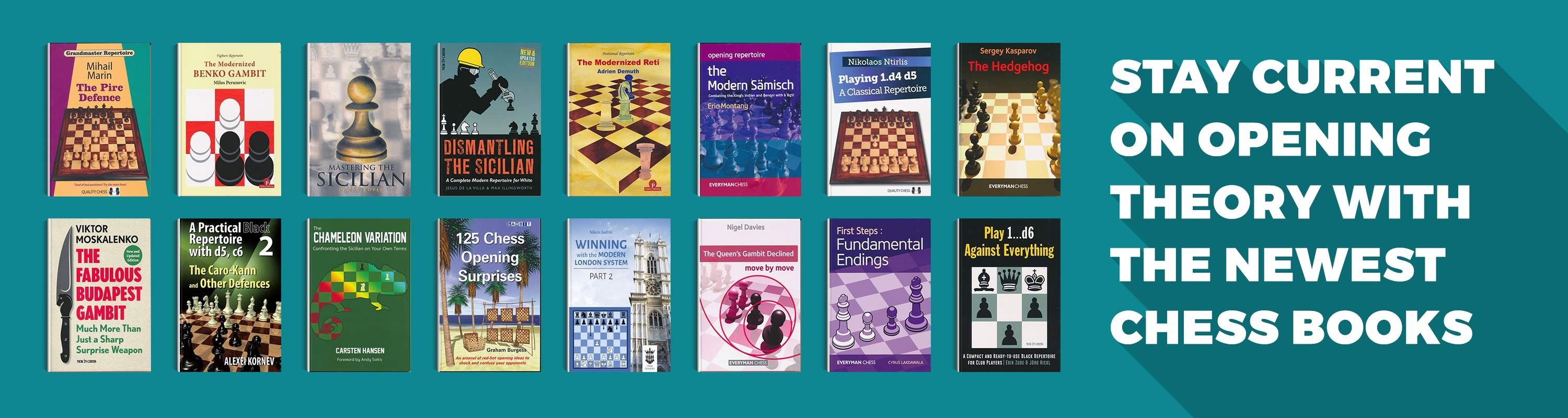Stay current on Opening Theory with the newest Chess Books